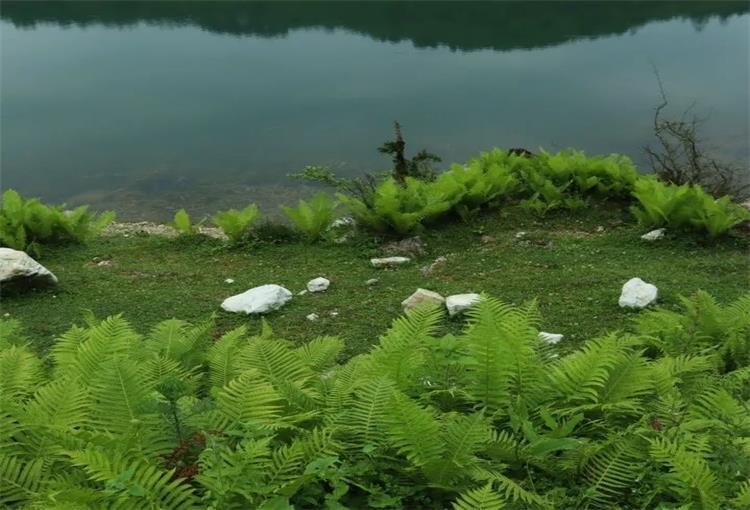 浮云牧场---面朝海子 看山看水发呆